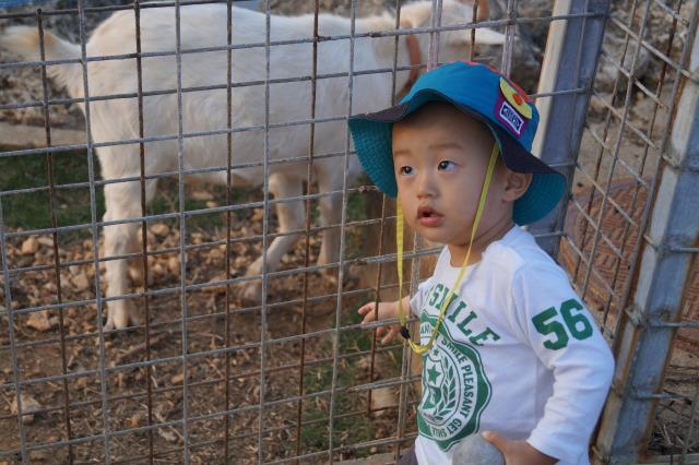 沖繩 殘波岬公園 小孩