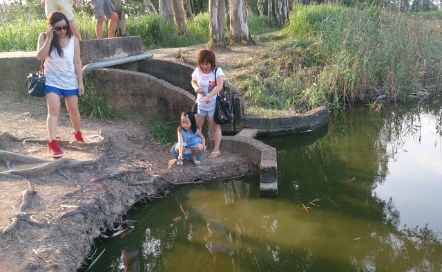 南生圍 小孩玩水