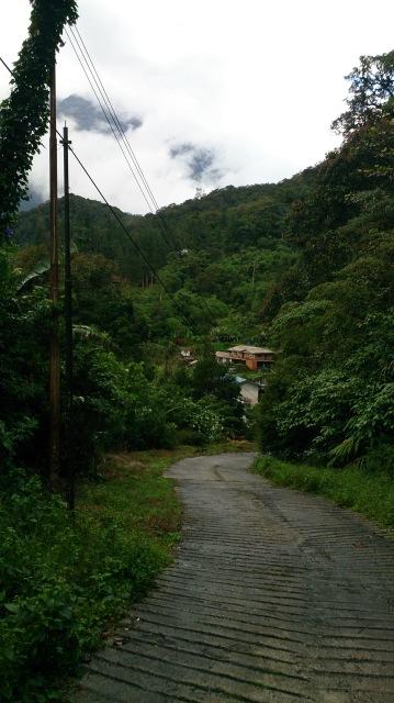 沙巴 神山 kinabalu lodge 小路