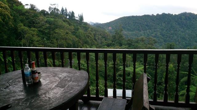 沙巴 神山 kinabalu lodge