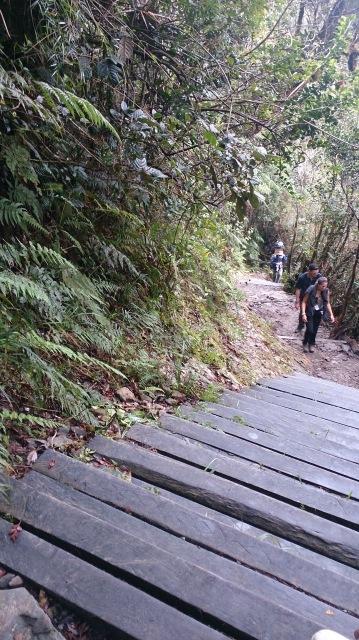 沙巴 神山 樓梯