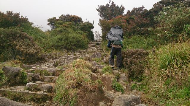 沙巴 神山 山路