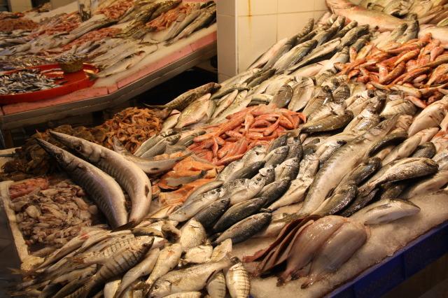 土耳其 魚市場2