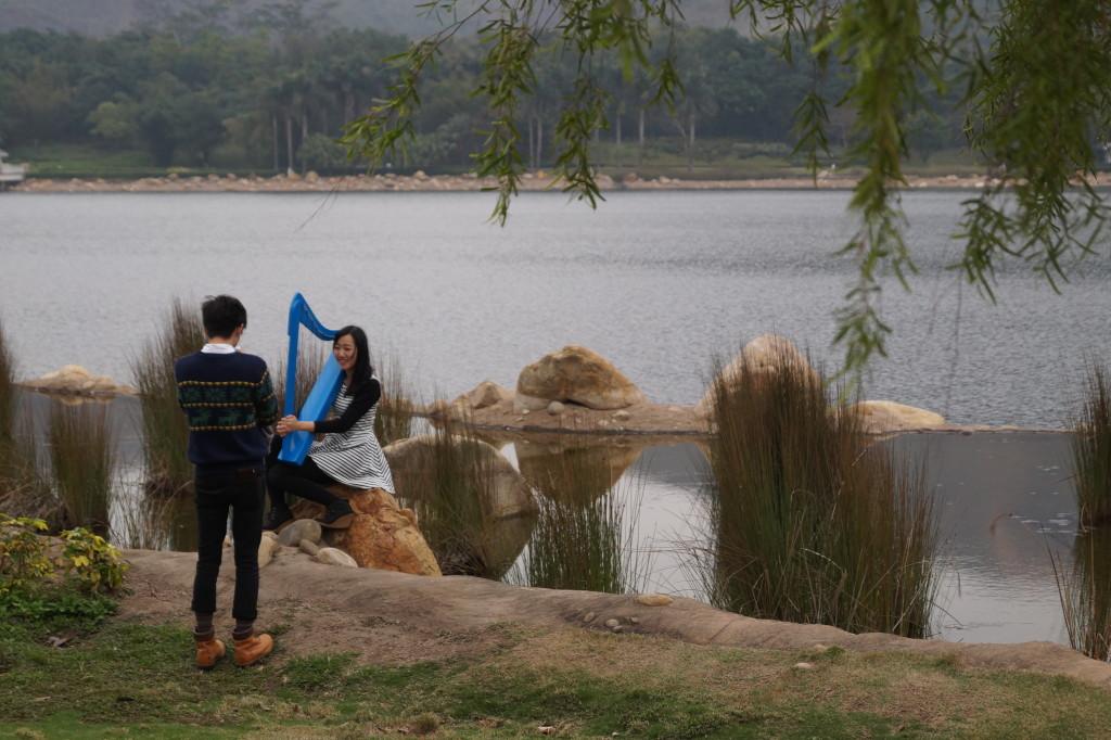 迪欣湖 草地