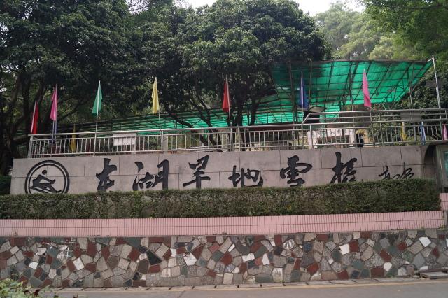 深圳 東湖旱地雪橇