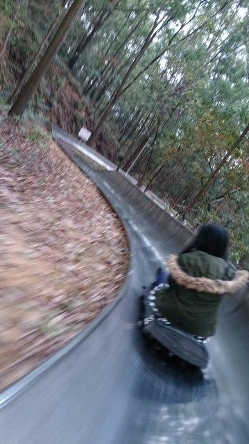 東湖旱地雪橇 轉急彎