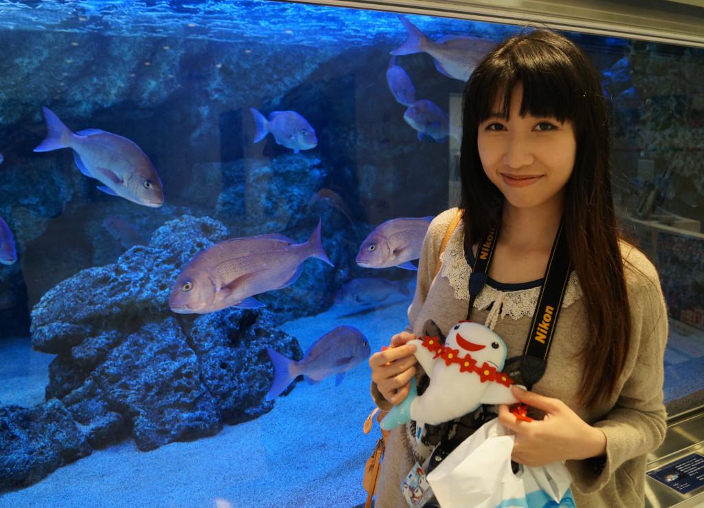 沖繩美麗海水族館 鯨鯊公仔