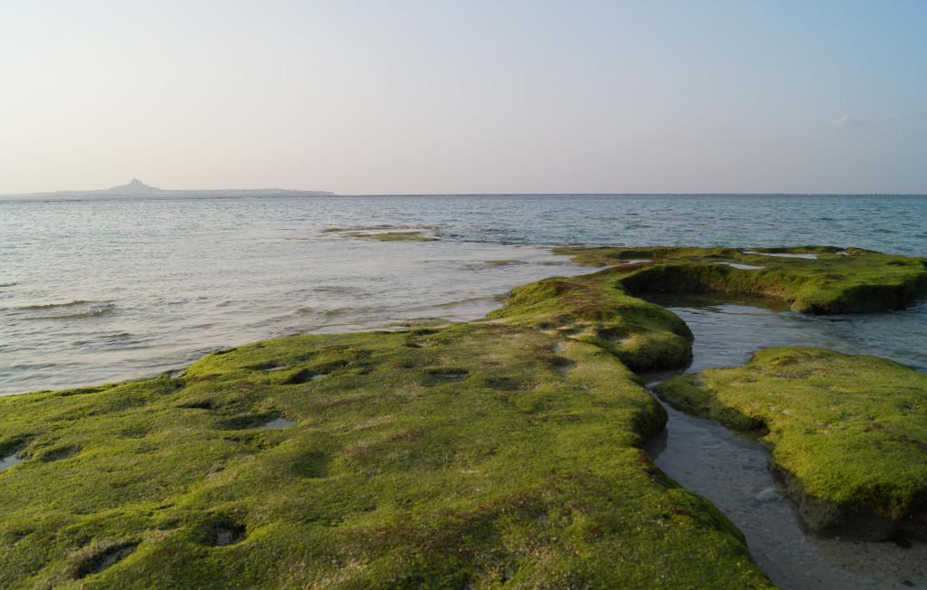 沖繩美麗海水族館 清澈的海水