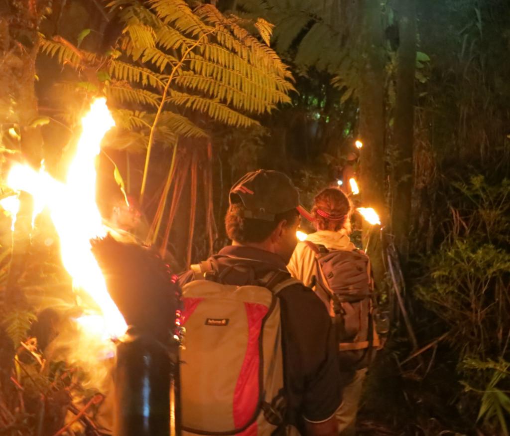 瓦努阿圖Ambrym火把穿越雨林