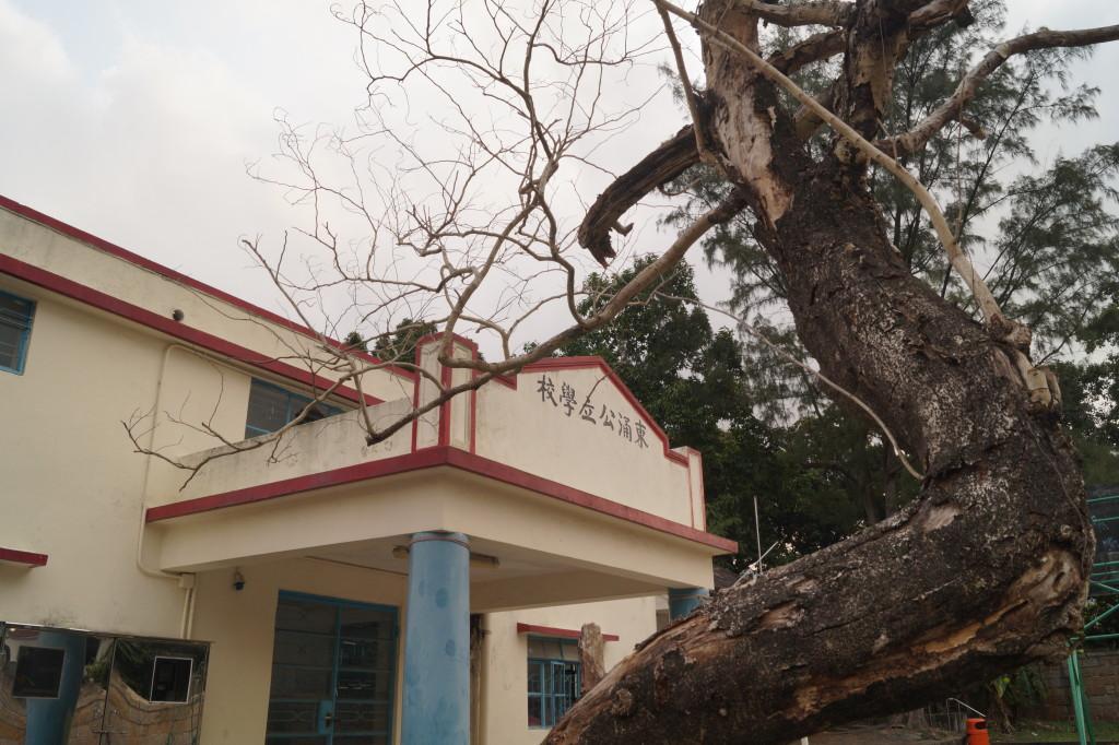 東涌公立學校門口